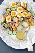 Potato salad with cucumber, red radishes and hard-boiled eggs and mustard dressing