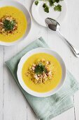 Exotic pineapple and curry soup with chicken breast fillet