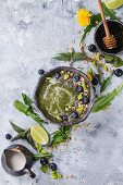 Spring green nettle and dandelion smoothie bowl served with lime, yellow flowers, young leaves, oat flakes, chia seeds, blueberries, cream and honey over gray blue texture background