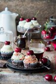 Black Forest cherry cupcakes