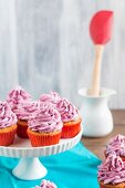 Cupcakes with berry cream