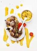 Snails with yellow garlic sauce (top view)
