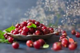 Red gooseberries in and around a metal bowl