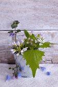 Flowering herbs in small metal bucket