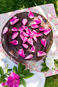 Chocolate cake decorated with rose petals