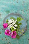 Wildrosenblüten und Wildkräuter