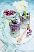 Porridge with frozen blackberries, mint and spirulina