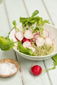 Radishes with mint and almond pesto