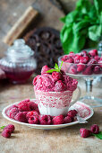 Raspberry ice cream served in a red and white porcelain cup