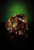 A lettuce against a green and black background