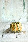 A mini pumpkin against a white wooden background