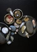 Various types of salt in mussel shells