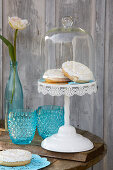 Donuts on blue doily under glass cover