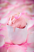 Rose ice cream with a petal