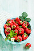 Strawberries with leaves and blossoms in a light blue bowl