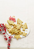 Christmas with Woman s Day - Extra-Special Santa Snacks - Cheddar & Chive Tree & Star Crackers