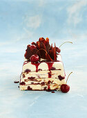 Black forest viennetta with cherry sauce