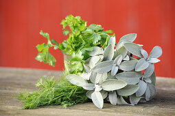 Fresh herbs for making natural cosmetics