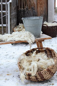 Freshly shorn and cleaned wool in a basket and on a wooden bench