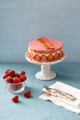 Fraisier (French strawberry cake)