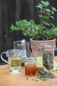 Mint tea in a glass, with dried leaves and honey