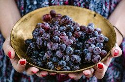 Frau hält Kupferschale mit blauen Trauben
