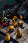 Pears on a old background and guelder rose