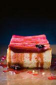 White chocolate and rhubarb cheesecake