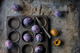 Still life of plums Bleue de Belgique on a zinc background