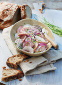 A rustic meat salad with radishes and red onions