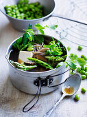 Japanese Style Vegetable, Tofu and Noodle Broth