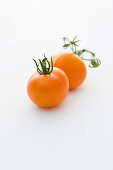 'Orange Favourite' (tomato variety)