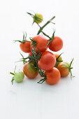 'Vesemij' (tomato variety)