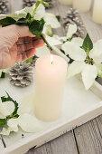 A white poinsettia stalk heated over a candle flame