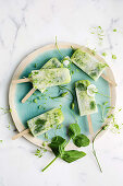 Zucchini, lemonade and mint popsicles
