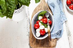 Insalata caprese (mozzarella with cherry tomatoes and basil)