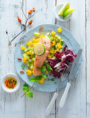 Salmon fillet on a mango and cucumber salad with radicchio