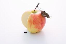 An Elstar apple, sliced