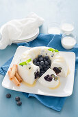 Yogurt and blueberry ice cream cake