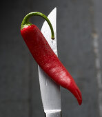 A red hot pepper on a knife tip with water droplets