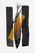 Food art: mackerel (gold, black and white)