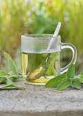 Sage tea in a glass cup