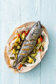 Small tuna fish with oven cooked vegetables