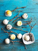 Lemon, chia and yoghurt cake pops