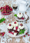 Chocolate and vanilla buttercream cupcakes with raspberry