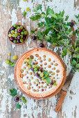 Gooseberry pie with quark filling