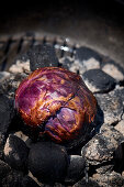 Charcoal-smoked red cabbage