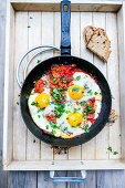 Vegetarian gyros with tomato sauce, fried eggs and parsley