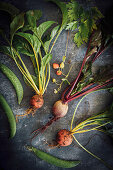 A selection of different beetroot freshly pulled from the garden