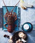 Celeriac, mushrooms and rock lobster
